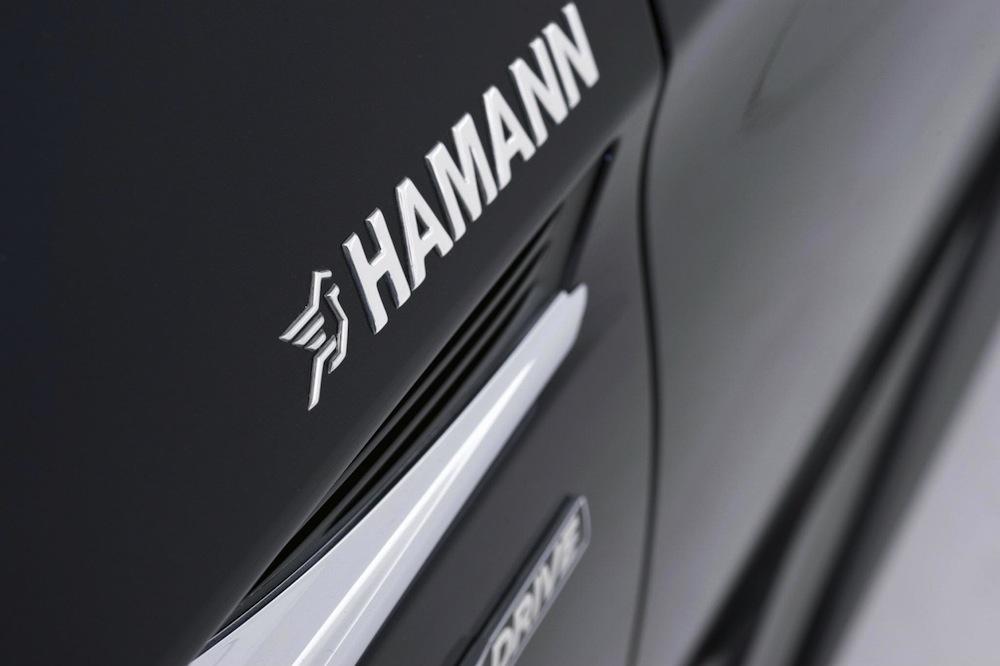 Name:  hamann-f13-9.jpg Views: 10022 Size:  93.2 KB