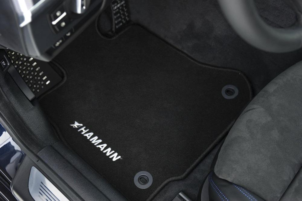 Name:  hamann-f13-11.jpg Views: 9805 Size:  139.5 KB